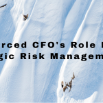 strategic-risk-management-cfo-services