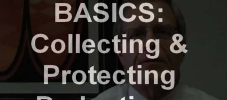Business Basics: Collecting and Protecting Tax Deductions