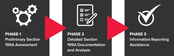 section-199a_analysis